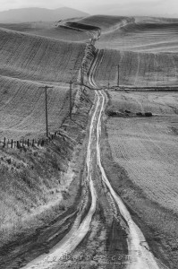 Brose Road and rolling hills of the Palouse