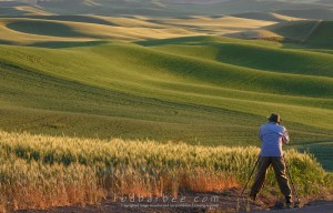 Photographing in the Palouse.