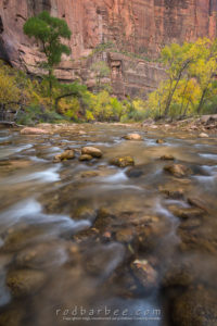 Virgin River in the Temple of Sinewava, Zion National Park, UT