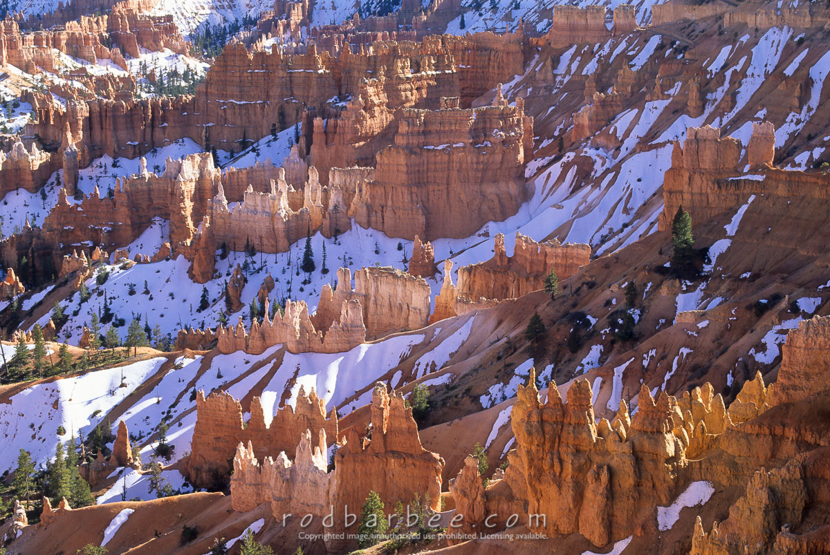 bryce canyon national park asian singles Arches & canyonlands national parks bryce canyon national park capitol reef national  $139900 per person based on single occupancy book  grand canyon traveler.