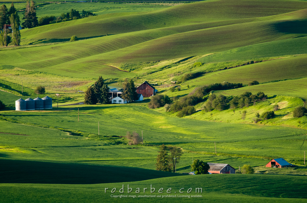 palouse buddhist singles This thread is somewhat inspired by the work many of us are doing trying to make sure we find positive parts of each day as we continue the path of healing it also is partially i.
