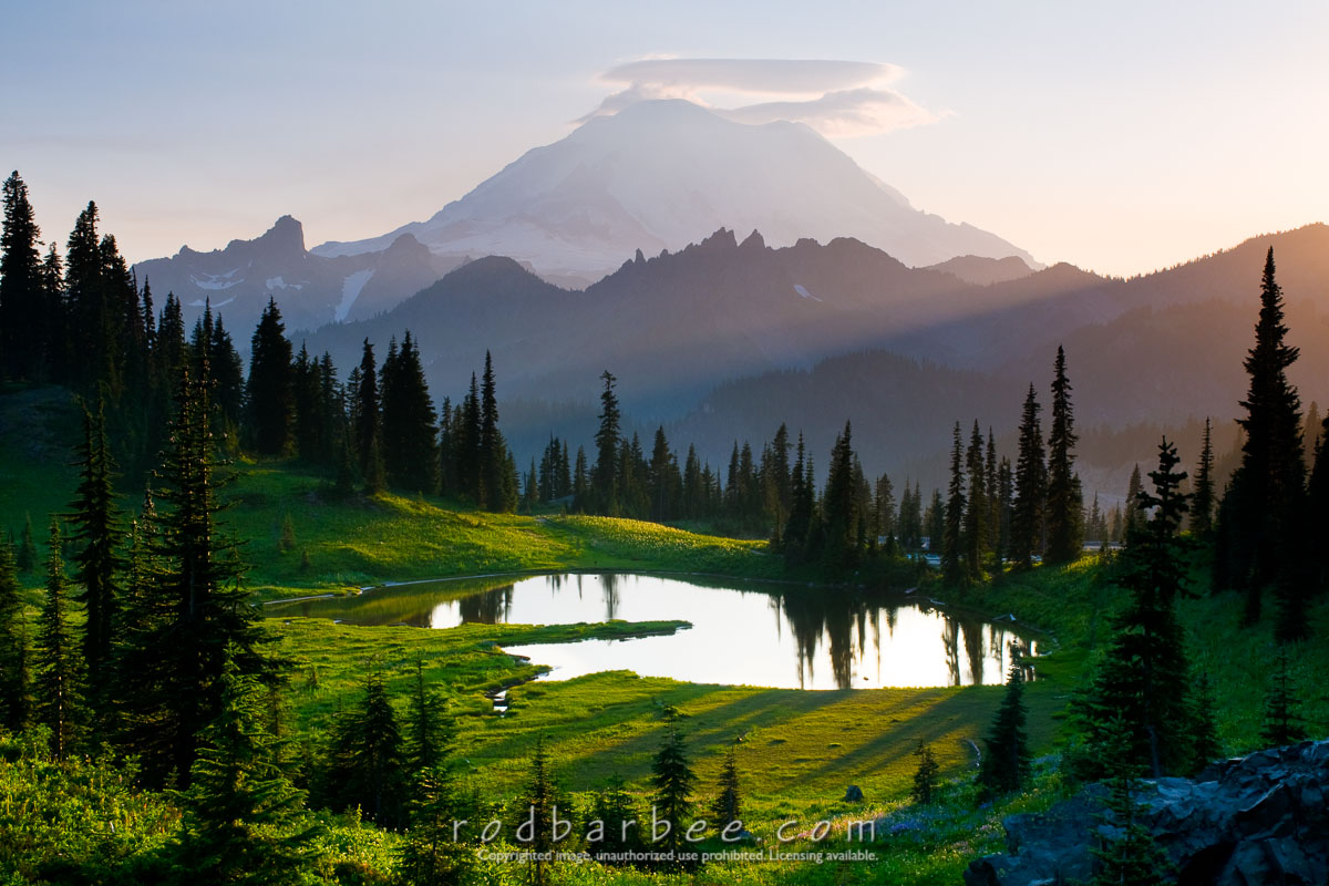 Barbee_090804_3_1851 |  Upper Tipsoo Lake and Mt. Rainier, Mt. Rainier National Park. Late afternoon. Summer.